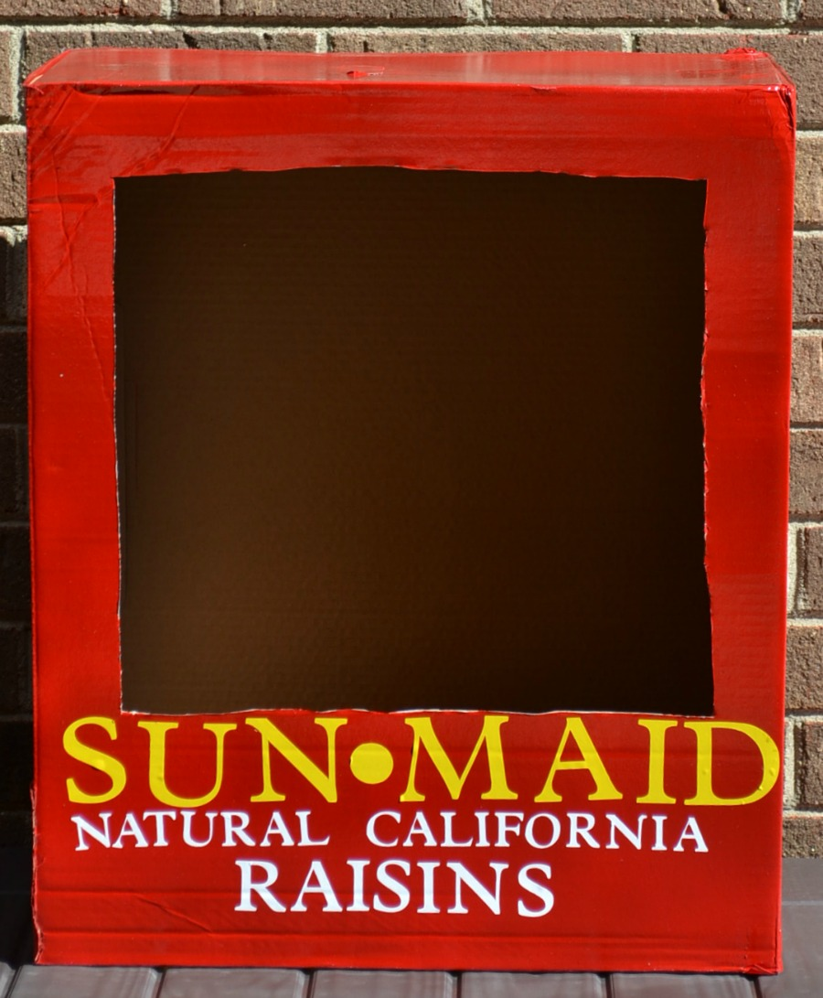 either cut out vinyl letters or purchase vinyl letters from the local arts and crafts store and place the words sunmaid natural california raisins on the - California Raisin Halloween Costume