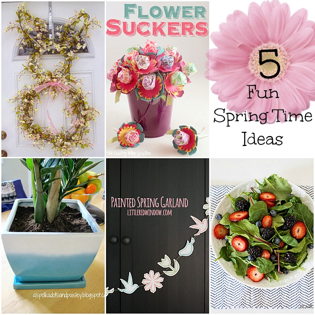 Spring Time Projects