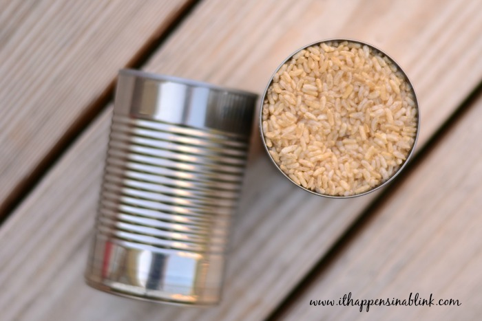 Americana Punched Tin Cans Frozen