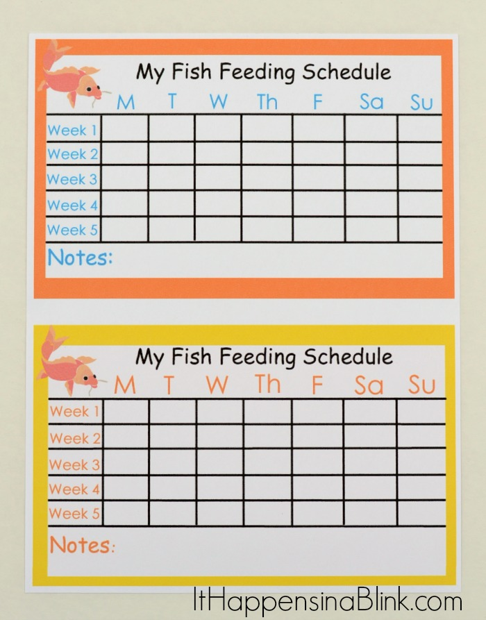 A fish as a first pet and a fish feeding schedule printable for Pregnancy fish chart