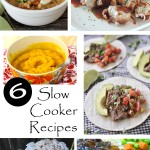 6 Slow Cooker Recipes and The Project Stash