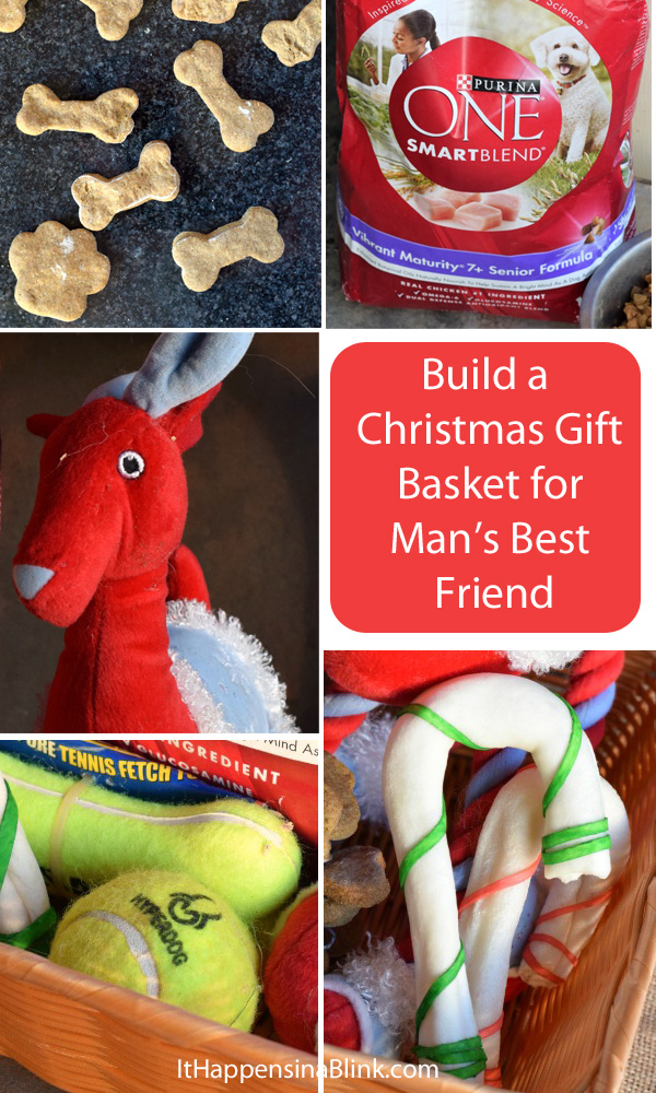 Create a Dog Christmas Gift Basket  |  #ad #OneSmartDifference  |