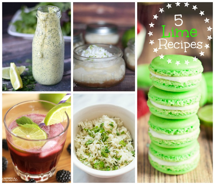 5 Lime Recipes from The Project Stash link party