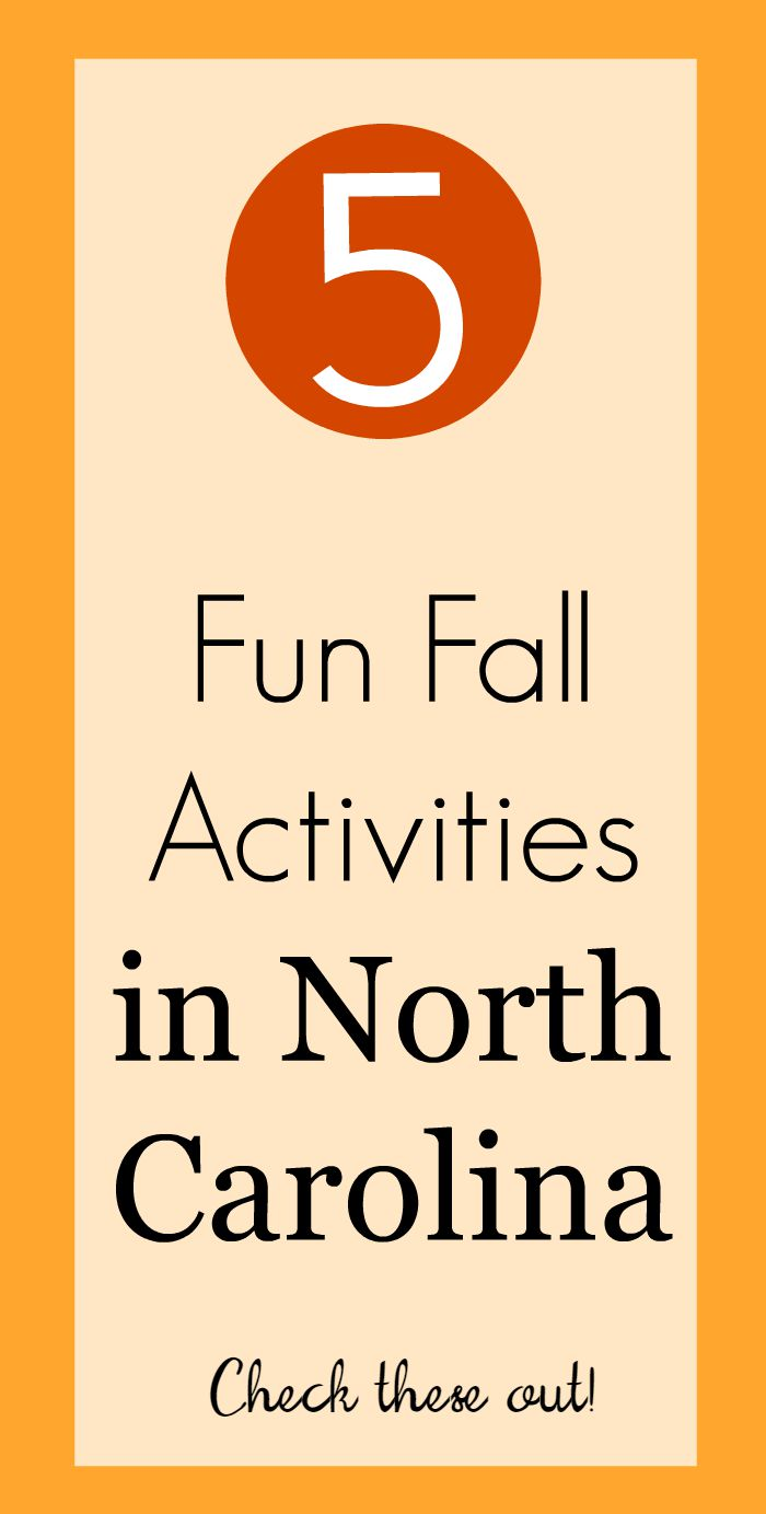 5 Fun Fall Activities in North Carolina