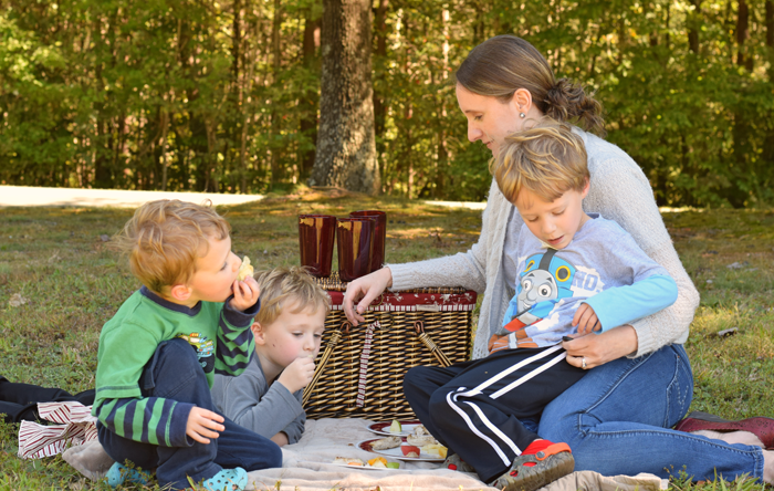 Our Outdoor Fall Picnic #LiveMediterranean #CG #ad