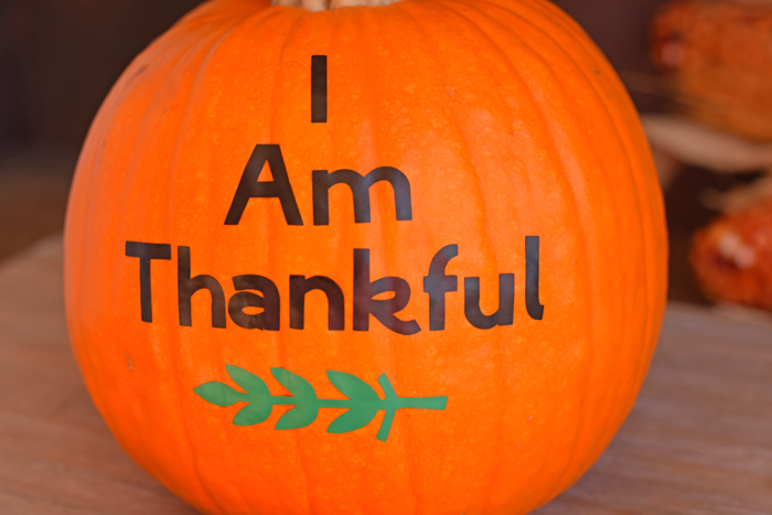 The Thankful Pumpkin project for November or Thanksgiving