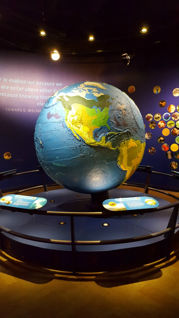 Visiting Discovery Place Science: An Educational Adventure