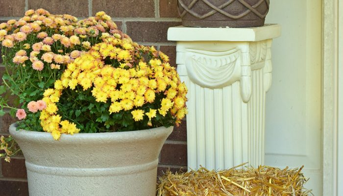 My Fall Front Porch Reveal