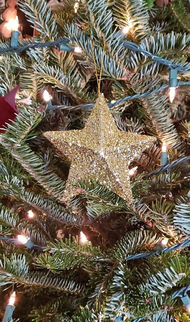 Glitter Paper Mache Star Ornament Craft