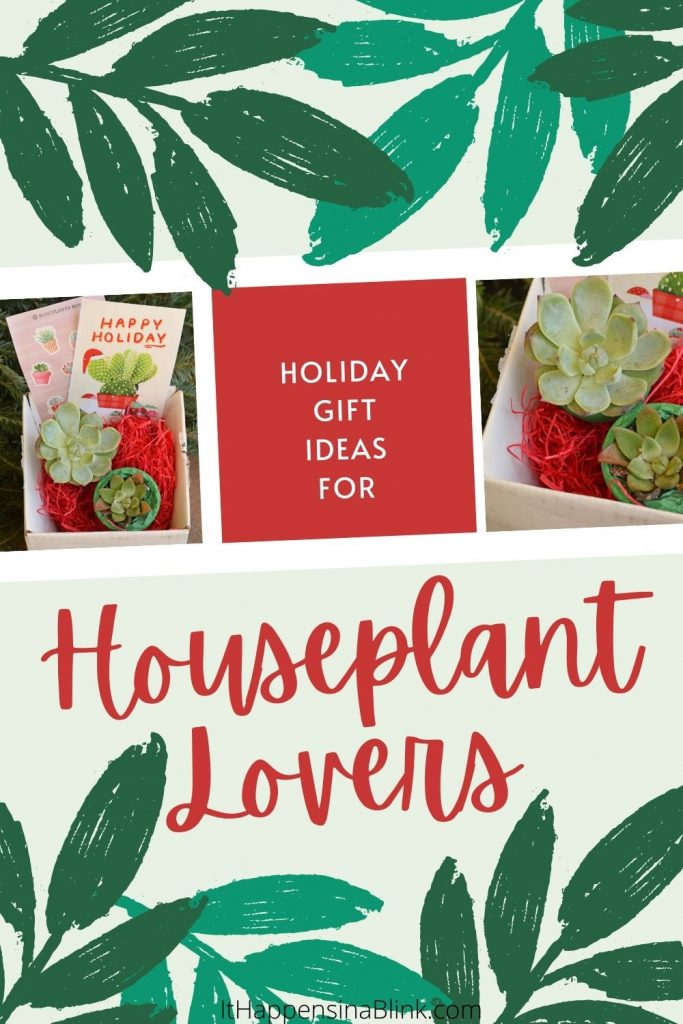 Gift Ideas for Houseplant Lovers