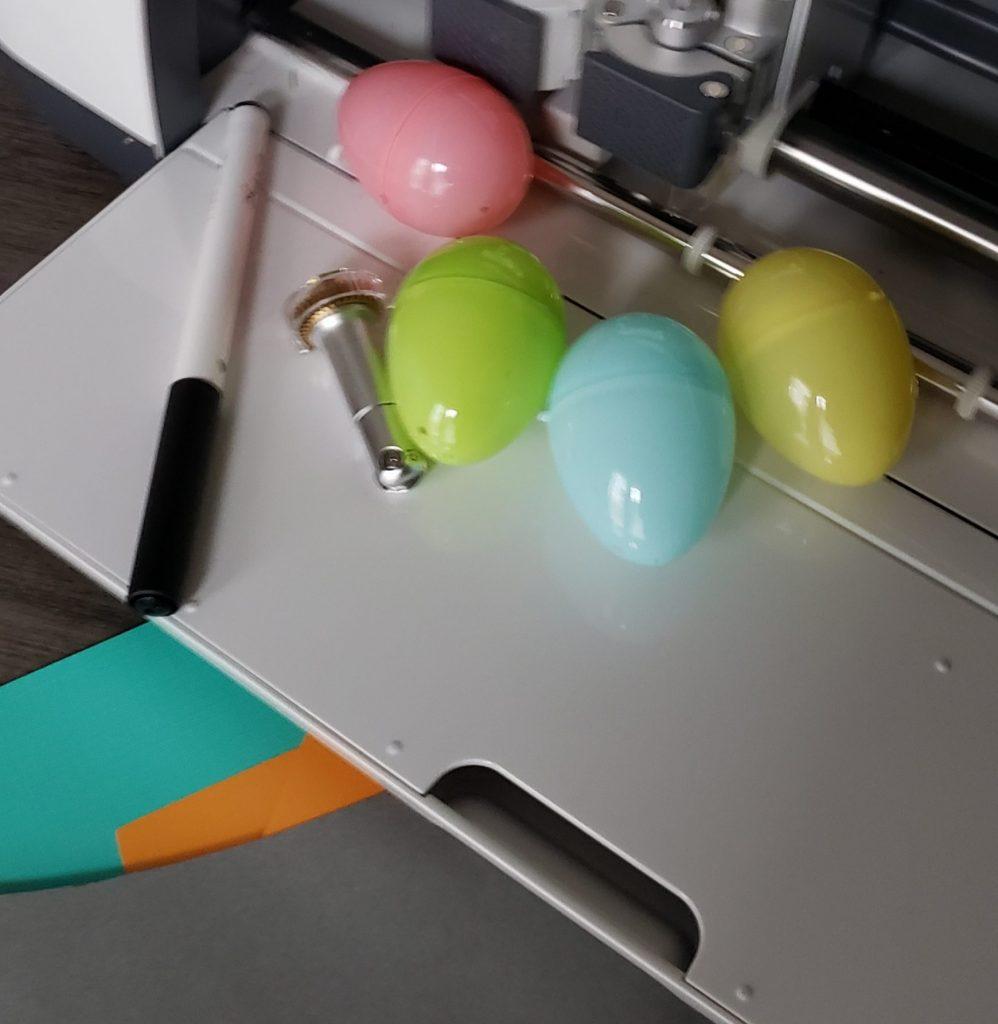 Animal Eggs supplies